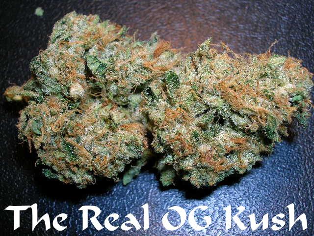 real_OG_Kush
