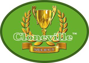 oval green cville